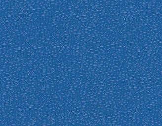 Blue - scanmobile