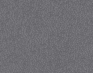 Dark Grey - scanmobile