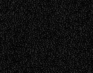 Black - scanmobile