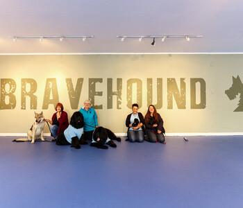 thumbnail: Bravehound charity